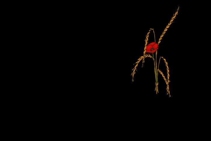 GastHOF Allegra - Küngoldingen